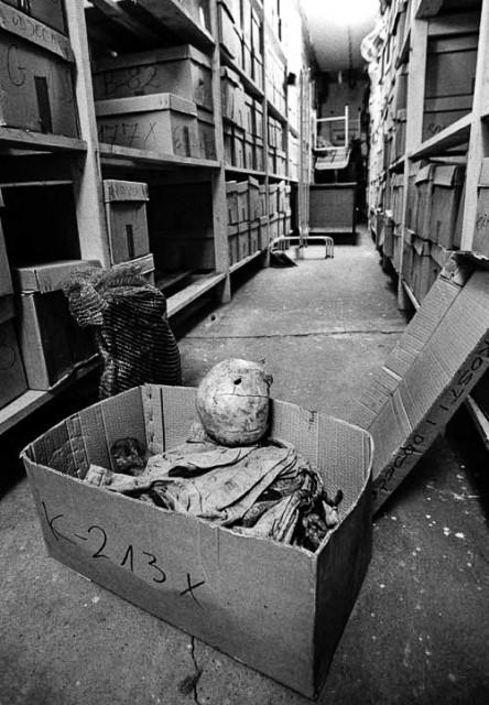 Srebrenica mortuarium